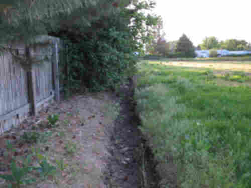 Example of a clean irrigation ditch
