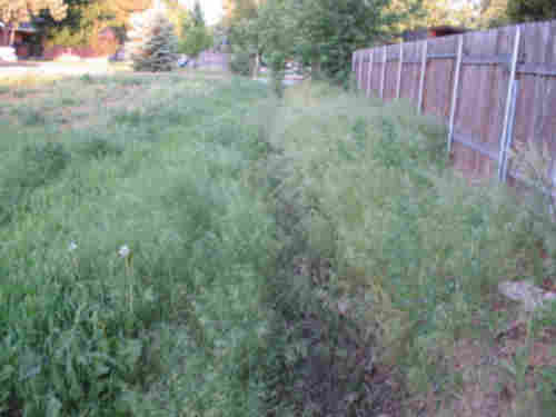 Example of a dirty irrigation ditch